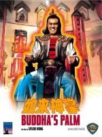 BUDDHA'S PALM