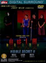 VISIBLE SECRET 2