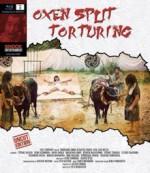 Oxen Split Torturing